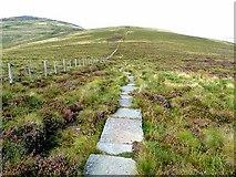 NT8721 : Pennine Way at Birnie Brae by Oliver Dixon