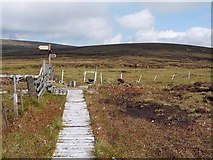 NT8919 : Junction on the Pennine Way by Oliver Dixon
