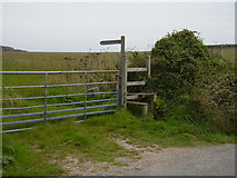 SX5547 : Footpath Sign at Rowden Court by Anthony Vosper