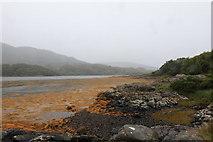NM6356 : Caolas Shoreline of Caolas Rahuaidh by Michael Jagger