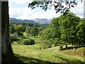 NY3303 : The Langdale Pikes from the Cumbria Way by Peter S