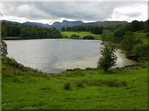 NY3404 : Loughrigg Tarn, view west by Peter S
