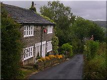 SE0320 : A splash of colour on a grey day by John H Darch