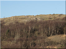 SS8677 : Exposed section of cliff at Merthyr Mawr Warren by eswales