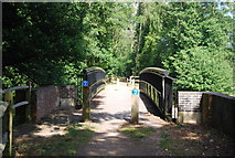 SU9946 : Downs Link bridge over the River Wey by N Chadwick