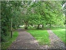 SK5907 : Riverside walk along the Soar by David P Howard