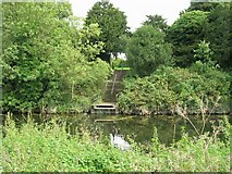 SK5907 : Steps up to St Peter's Church from River Soar by David P Howard
