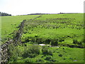 NY7062 : West Burn and pastures below Sandyford Rigg by Mike Quinn