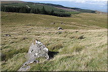 SD7659 : Moorland north of Whelp Stone Crag by Tom Richardson