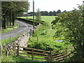 NY7163 : Bridge over West Burn by Mike Quinn