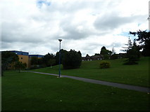 SU9850 : University of Surrey- Stag Hill Campus by Basher Eyre