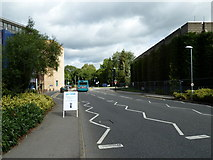 SU9850 : Road within the Stag Hill Campus by Basher Eyre
