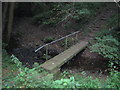NZ4536 : Footbridge over Bellows Burn by peter robinson
