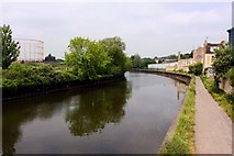 ST7465 : The River Avon from Victoria Bridge by Steve Daniels