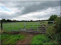 SK0425 : Big gates into a big field by Christine Johnstone
