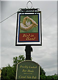 SO8171 : Bird in Hand (3) - pub sign, 5 Holly Road by P L Chadwick