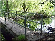 SU7251 : Footbridge over the Whitewater River in the Greywell Moors Nature Reserve by Margaret Sutton