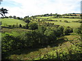 SO1985 : Tributary of the River Clun by Philip Halling