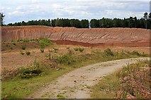 SJ9715 : Quarry, Warren Hill by Mick Garratt