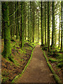 NS0122 : Woodland Pathway near Eas Mor Waterfall by Andy Beecroft