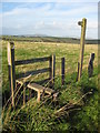 SO2486 : Stile near Two Crosses by Philip Halling