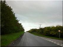 TA0609 : Heading South along Bigby Road by Ian S