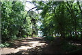 TQ0248 : Pilgrims' Way and North Downs Way to St Martha's Hill by N Chadwick