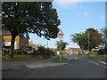 NZ4424 : Castleton Drive Billingham by peter robinson