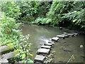 NZ2567 : Stepping Stones, Jesmond Dene by Andrew Curtis