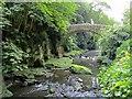 NZ2567 : Bridge to west of Jesmond Dene Mill by Andrew Curtis
