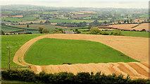J4772 : Fields near Newtownards (2) by Albert Bridge
