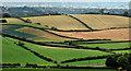 J4672 : Fields near Newtownards (3) by Albert Bridge