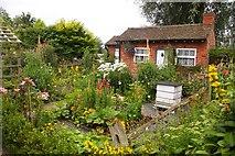 SJ7243 : Cottage garden at Bridgemere by Steve Daniels