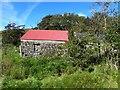 G9094 : Ruin, Edenfinreagh by Kenneth  Allen