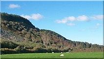 SH2428 : Hill slope flat land boundary below Plas yn Rhiw by Eric Jones