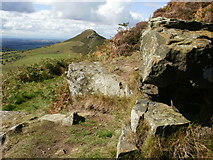 NZ5812 : Rocky foreground to Roseberry Topping by Peter S