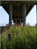 TM4599 : Beneath Haddiscoe Bridge by Glen Denny