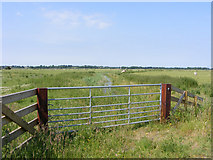 TM4599 : Gateway to Haddiscoe Marshes by Glen Denny