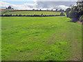 SO3517 : Farmland at The Court by Trevor Rickard