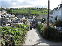 SW9980 : Roscarrock Hill. Port Isaac. Cornwall by Derek Voller