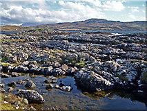 NG3136 : Rock pools on Oronsay by Richard Dorrell