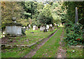 TG2408 : Rosary cemetery, Norwich by Evelyn Simak