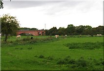 SK5815 : Fields by the River Soar Navigation by Andrew Tatlow