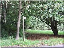 TQ4532 : Footpath at Newbridge by Malc McDonald