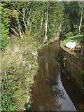 TQ4532 : Stream at Newbridge, Ashdown Forest by Malc McDonald