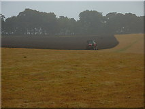 SK1868 : Yellow grass, red tractor, ploughing by Peter Barr