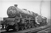 TQ2182 : Locomotives off Cup Final Specials at Willesden Depot by Ben Brooksbank