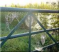 SO8829 : Early morning cobwebs 2 by Jonathan Billinger