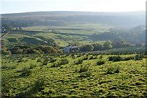 SD6715 : Grazing land below Lower Whittaker Farm by Bill Boaden