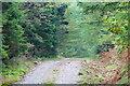 SH6438 : Track in Coed Felinrhyd, Gwynedd by Peter Trimming